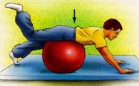 تمرین ورزشی برای کمر11