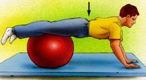 تمرین ورزشی برای کمر14